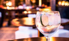 1 Gin Tonic pour 2 adultes