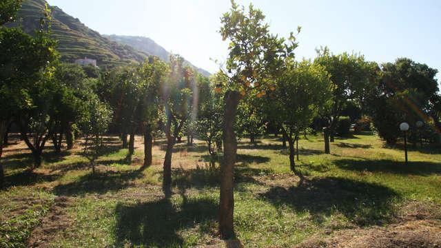 Tenuta Villa Tara