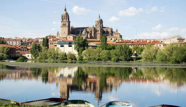 Conoce Salamanca a dos pasos del puente romano y el casco antiguo
