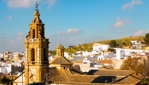 Authentique palais andalou à 1h de Séville