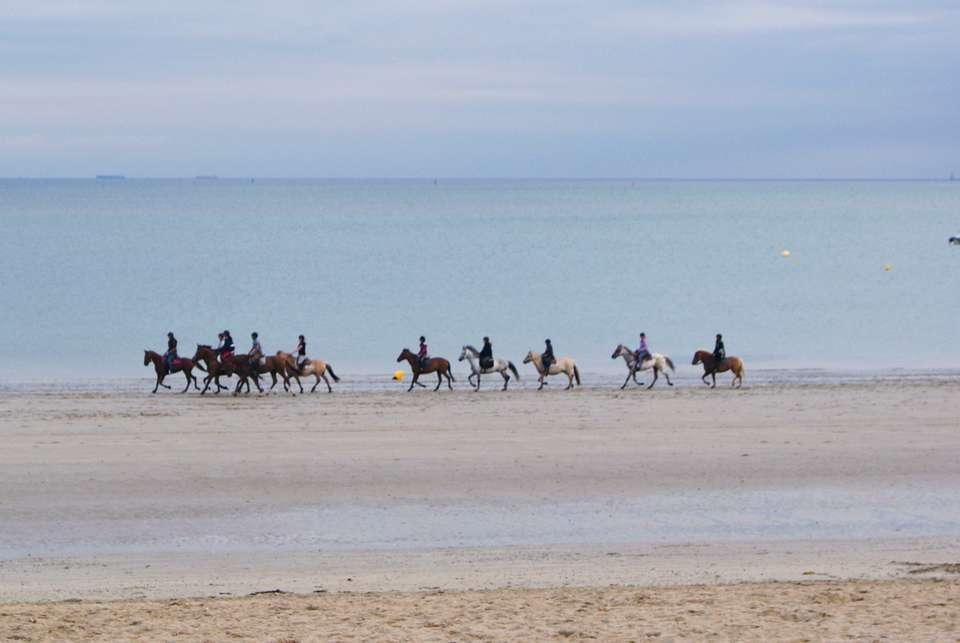 Hôte des Portes - Balade_a_cheval_sur_la_plage_de_la_Baule.jpg