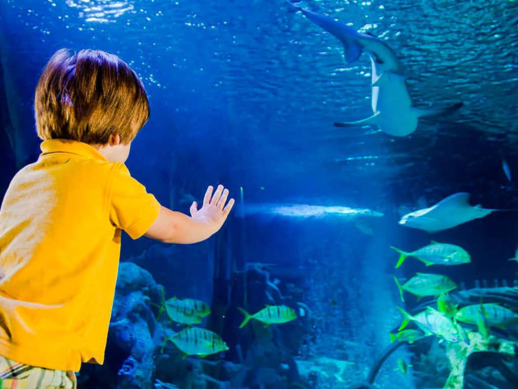Séjour France - Week-end en famille avec entrées pour l'Aquarium et visite du Musée Grévin !  - 4*