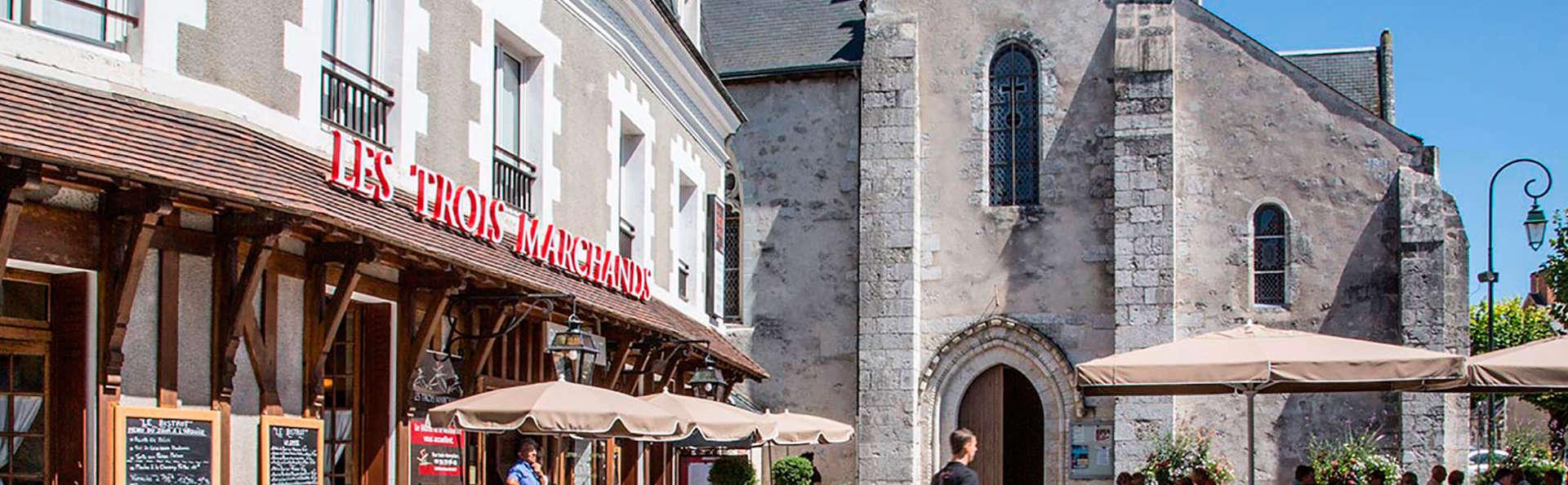 Promos d'Hiver : Charme en Sologne à deux pas de Chambord