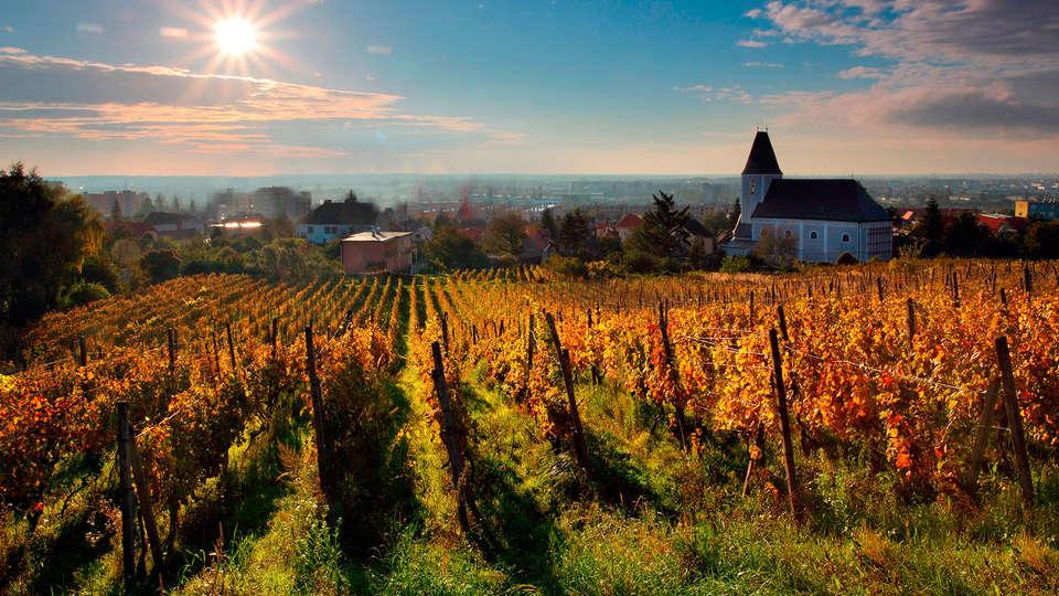 Relais des Trois Châteaux - edit_vines.jpg