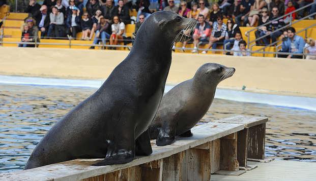 Marineland: Escapada con entradas al Parque acuático en Malgrat de Mar