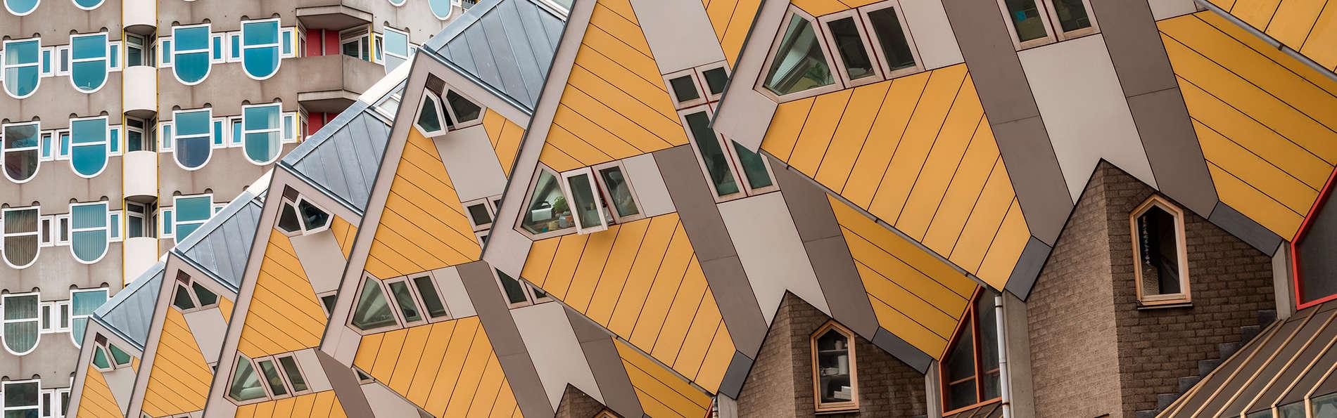 Ibis Rotterdam Vlaardingen - EDIT_rotterdam3.jpg