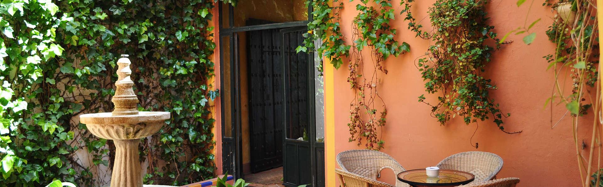 El Rincón de las Descalzas - EDIT_patio1.jpg