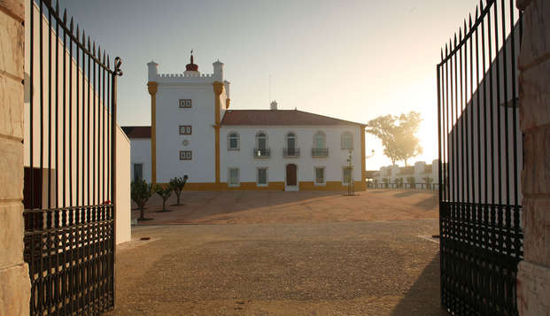 Disfruta de la campiña Portuguesa con visita a sus bodegas (desde 2 noches)