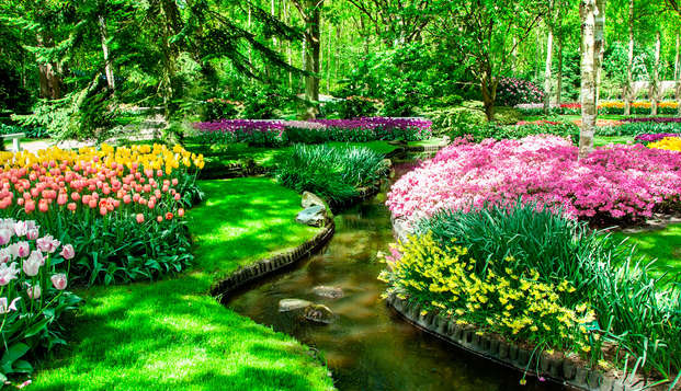 Lifestyle Hotel Carlton Ambassador - garden