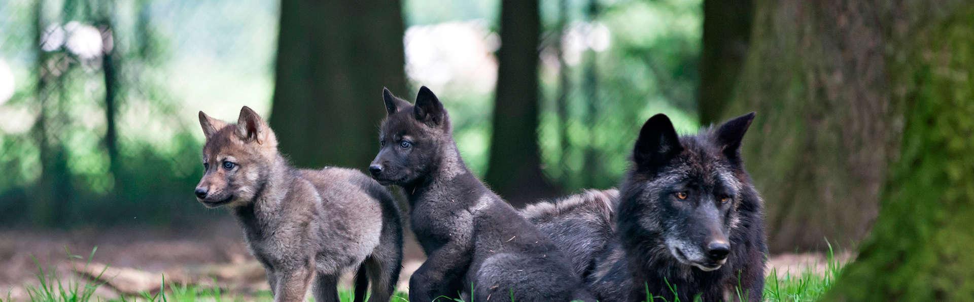 Escapade à Liège avec entrées pour le parc animalier Forestia