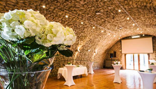Le Moulin de Vernegues Hotel et Spa Les Collectionneurs - conferencia