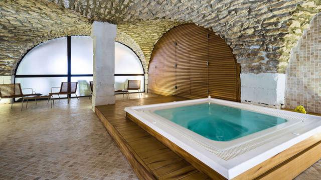 Relax en un molino del siglo XVII entre Aviñón y Aix-en-Provence