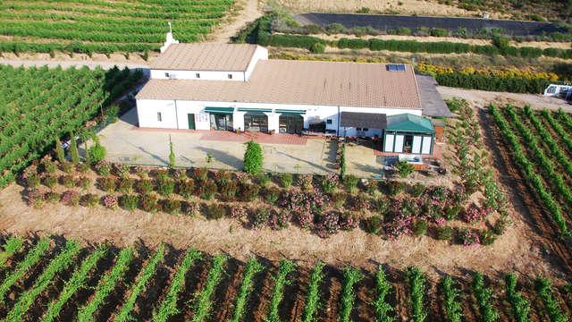Aanbieding in Ronda met bezoek aan het wijngoed van Morosanto
