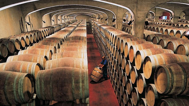 Lujo y Enología: Escapada con visita VIP y cata de vinos en la Bodega Marqués de Cáceres