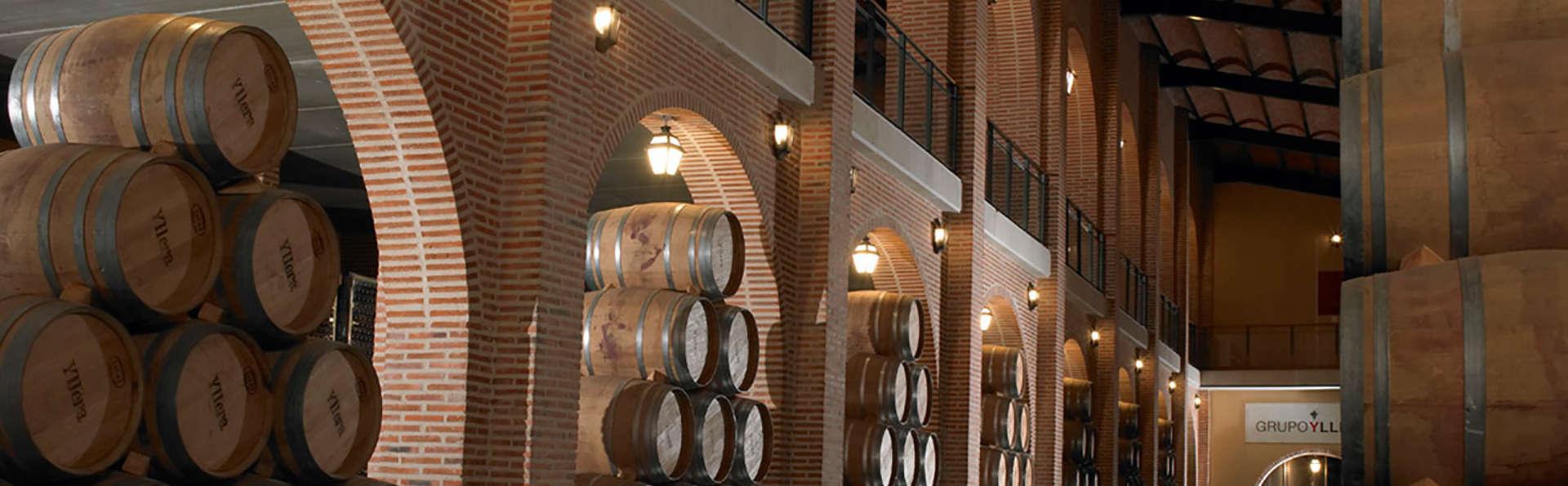 Visite d'une cave et dégustation de vins à Valladolid
