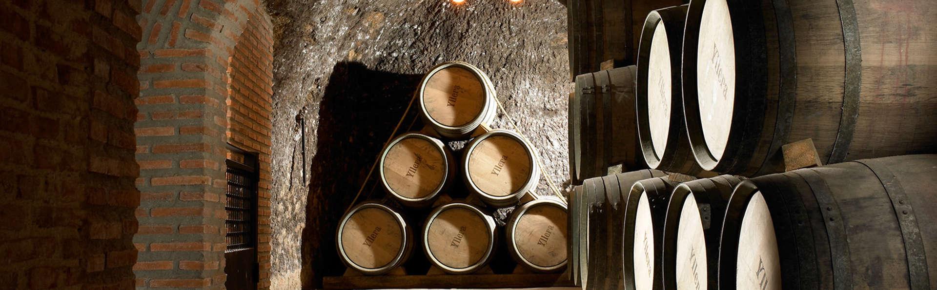 Visita Valladolid y cata el mejor vino castellano-leonés en una bodega