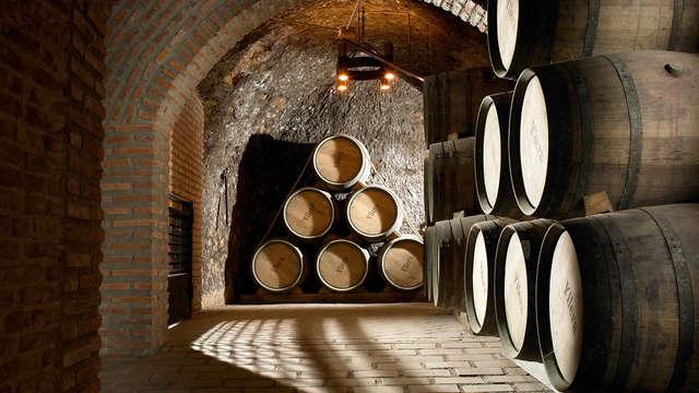 Especial enología: Visita a la bodega con cata de vinos y acceso a zona relax en Valladolid