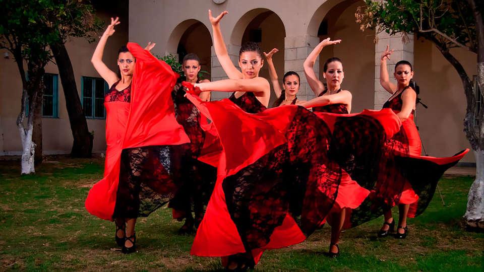 Boutique Hotel H10 Villa de la Reina - EDIT_flamenco.jpg
