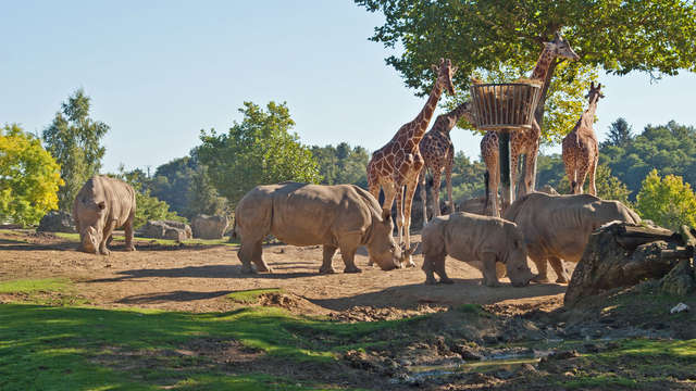Beleef mooie momenten met het gezin in ZooParc van Beauval