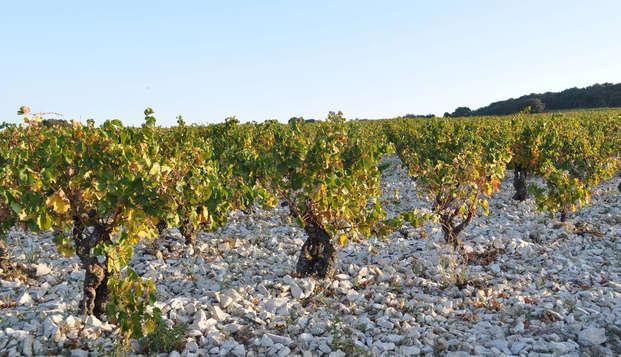 Week-end avec dégustation de vin à 15 minutes d'Avignon