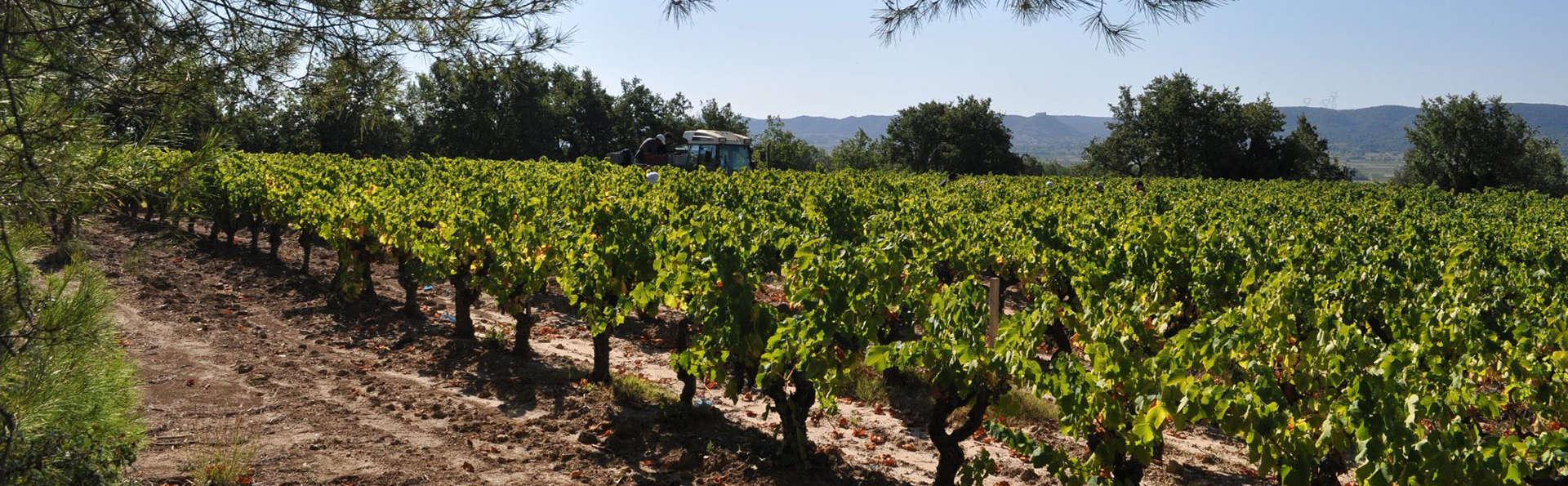 Week-end avec dégustation de vin à la maison Brotte à côté d'Avignon