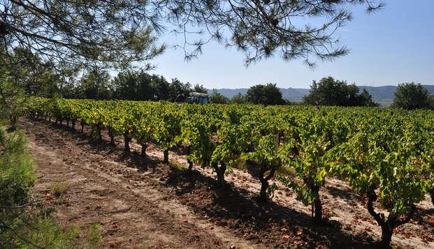 Escapada con cata de vinos en la casa Brotte cerca de Aviñón