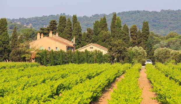 Week-end avec dégustation des vins de Châteauneuf-du-Pape à Avignon