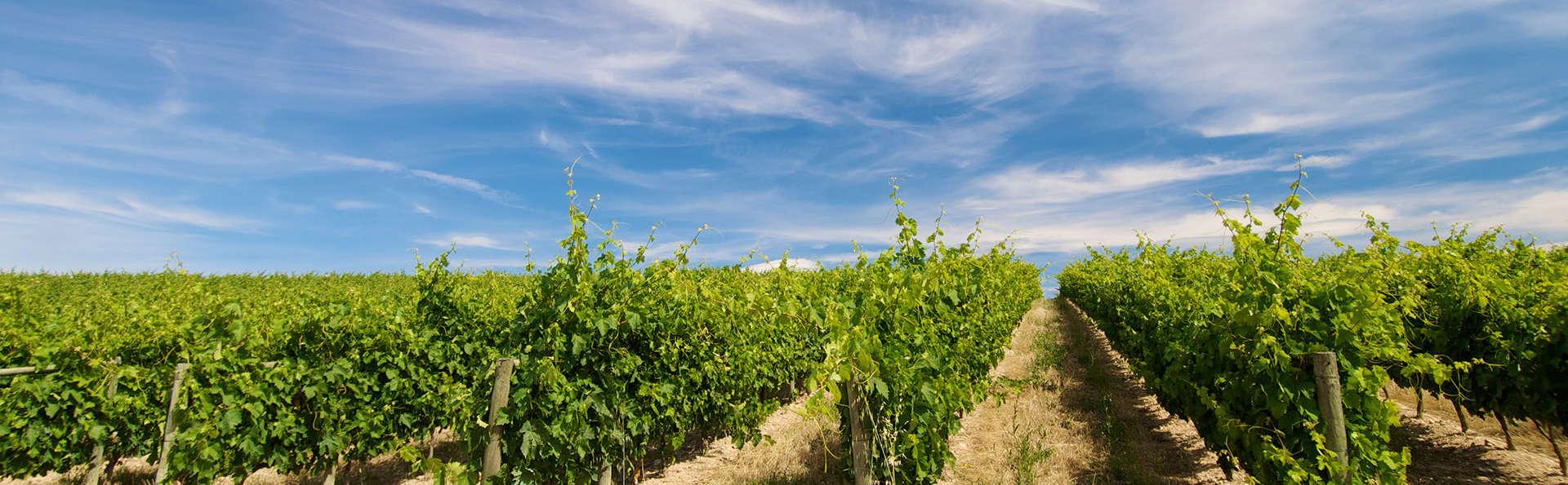 Week-end avec dégustation de vins à Tours