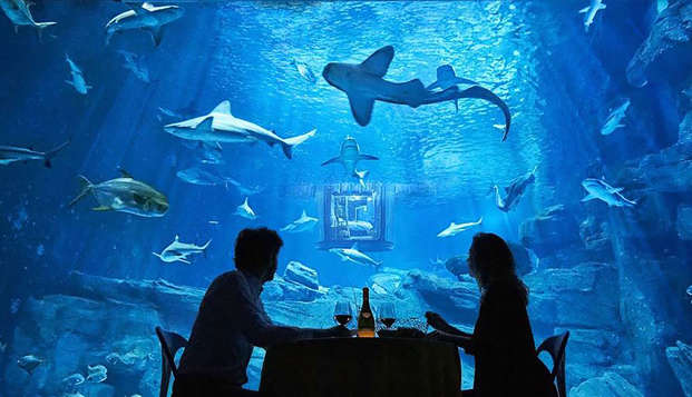 Weekendje weg met de familie en kaartjes voor het Aquarium van Parijs!