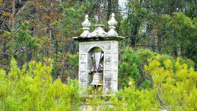 Escapada con Visita al jardín botánico del Pazo de la Saleta de Pontevedra