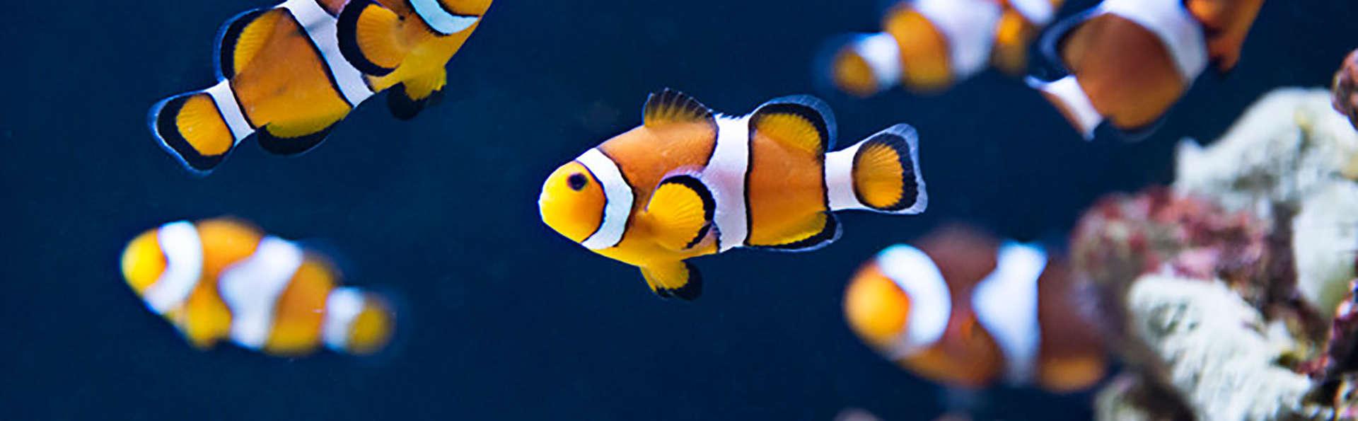 Week-end en famille avec entrée à l'Aquarium Sea Life (jusqu'à 4 personnes)