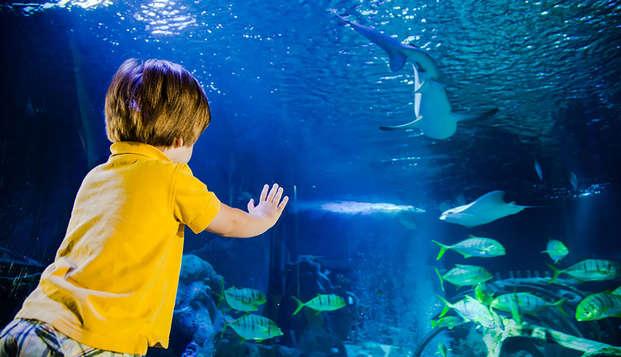 Descubre el Acuario Sea Life, cerca de Disneyland® Paris