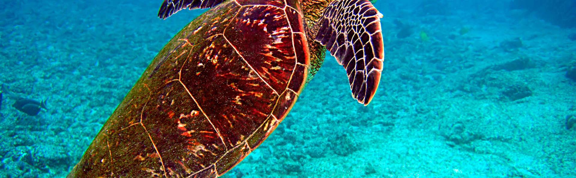 Découvrez l'Aquarium de Saint-Malo le temps d'une escapade !