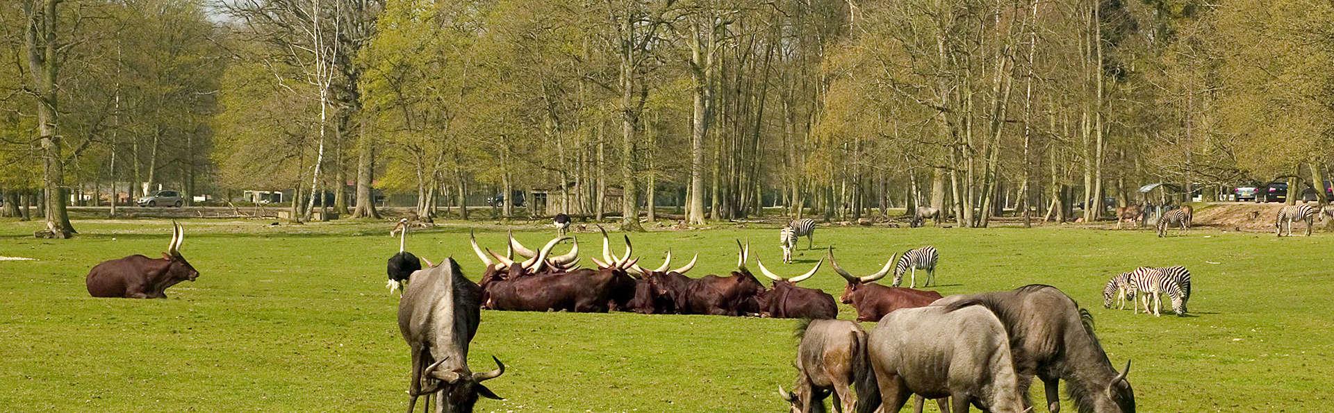Aventurez-vous au zoo de Thoiry le temps d'un week-end