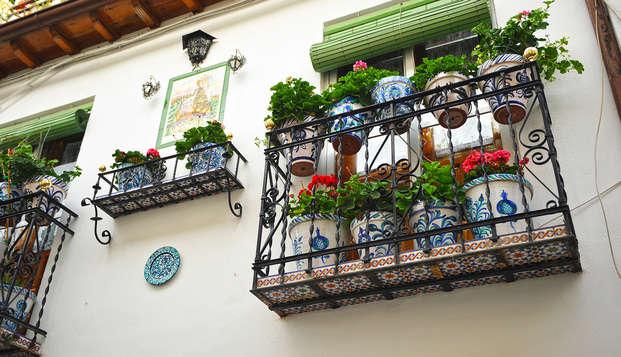 Ruta a pie por los barrios de Albaicín y Sacromonte (con guía oficial)