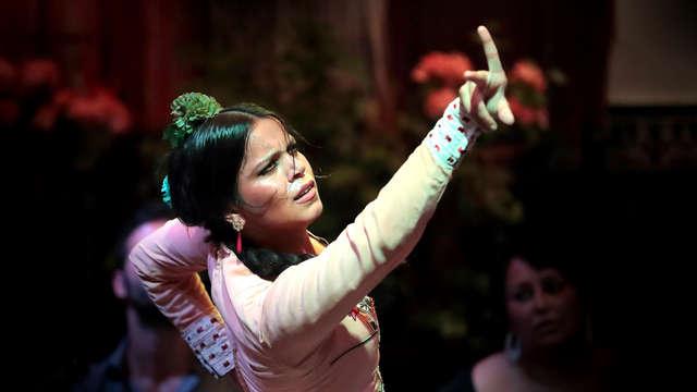 Escapade avec spectacle de flamenco à 1 minute de l'hôtel