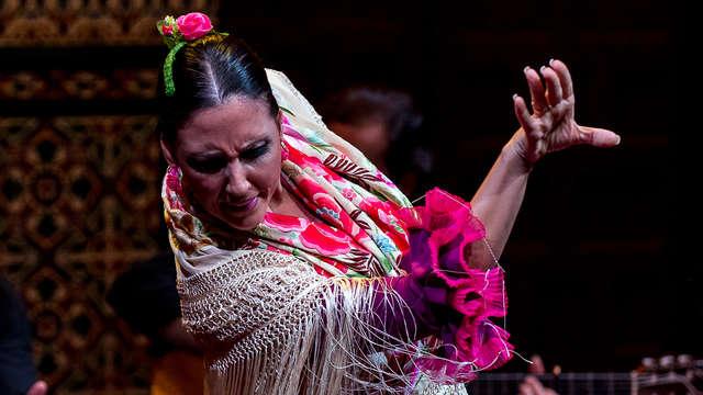 La Casa del Maestro Boutique - La-Casa-del-Flamenco