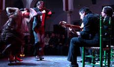 Entrée à La Casa del Flamenco (spectacle à 20h30) pour 2 adultes