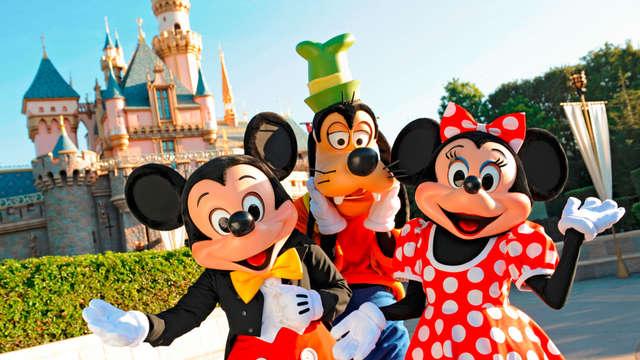 Entrée aux 2 parcs Disneyland® Paris (2 jours) pour 2 adultes