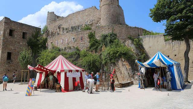 Week-end au cœur de l'Alsace avec entrées au Château Médiéval de Hohlandsbourg