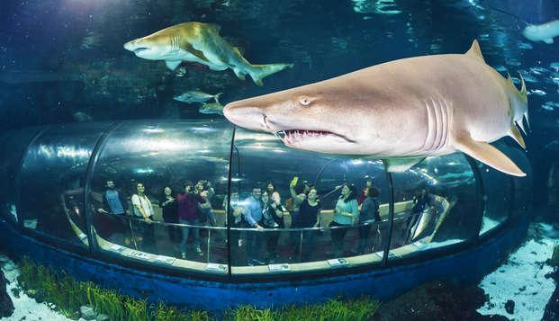 Escapada a Barcelona con entradas a su magnífico aquarium