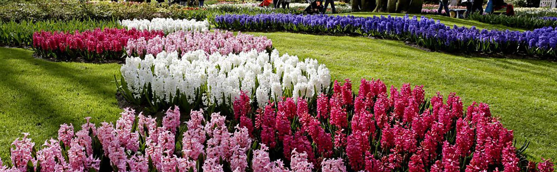 Keukenhof special: Luxe in Amsterdam en bloemenpracht in Keukenhof