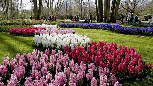 Fleurs splendides dans le Keukenhof et détente dans l'espace bien-être (2 nuits)
