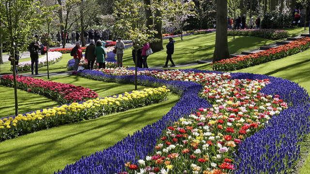 Visitez le Keukenhof et profitez du luxe et du confort à Scheveningen