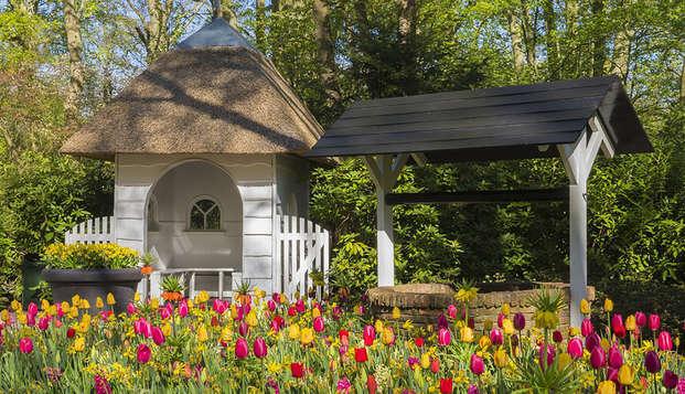 Visitez le magnifique parc de Keukenhof et séjournez près d'Amsterdam