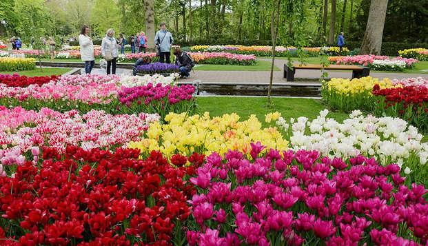 Profitez d'Amsterdam et de la beauté des fleurs au Keukenhof