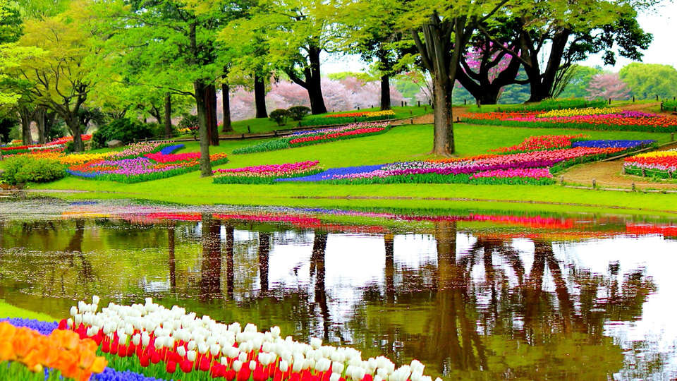 Carlton Beach - edit_Keukenhof20.jpg