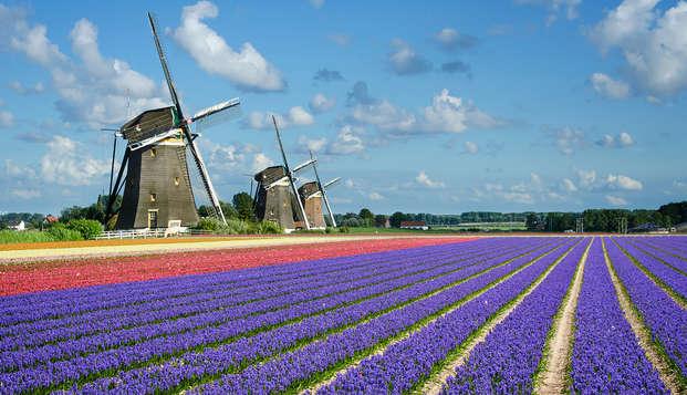 Découvrez Leiden et visitez le célèbre Keukenhof