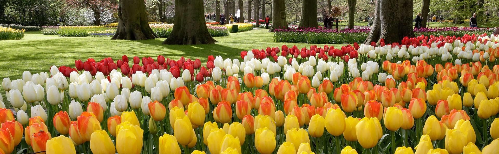 Luxe et bien être dans un cadre design et visitez les belles fleurs de Keukenhof