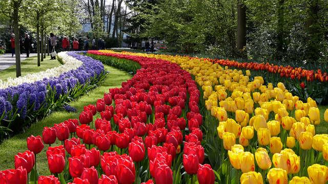 Genieten van Amsterdam en de bloemenpracht in de Keukenhof